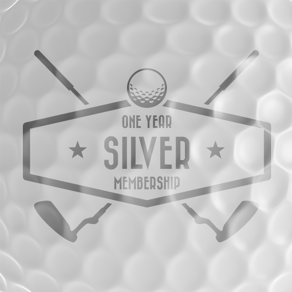 placeholder-silver